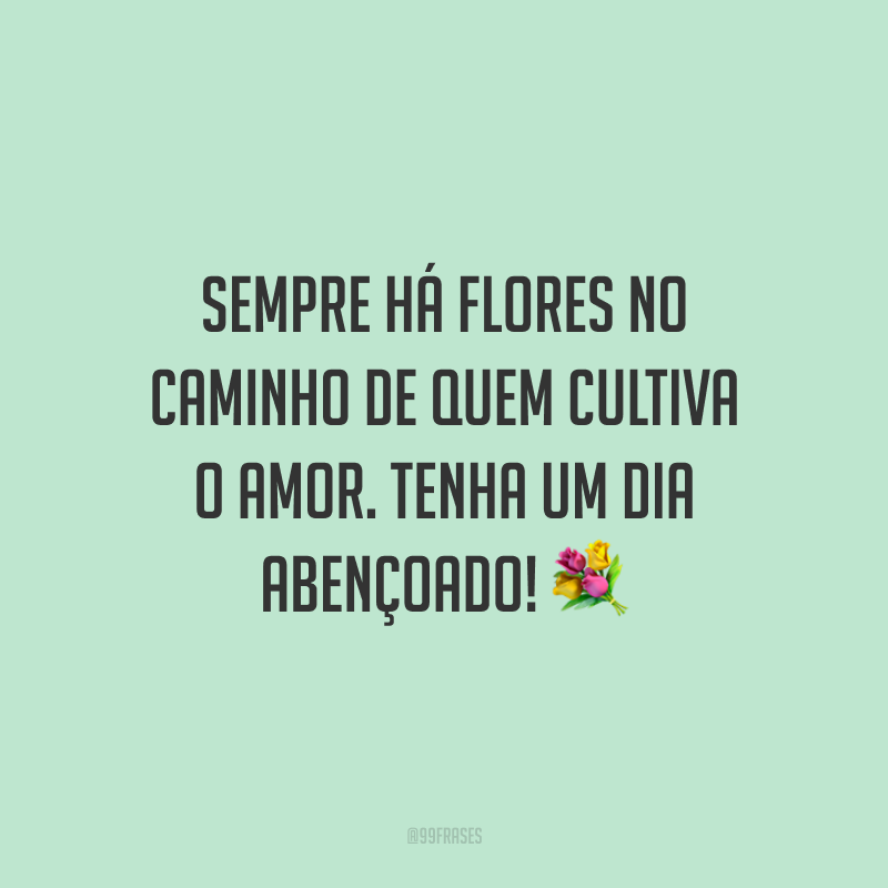 Sempre há flores no caminho de quem cultiva o amor. Tenha um dia abençoado! 💐