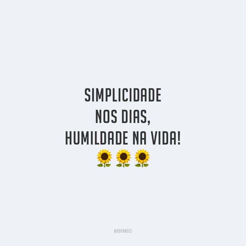 50 Frases De Simplicidade Para Dar Valor Aos Pequenos Detalhes Da Vida