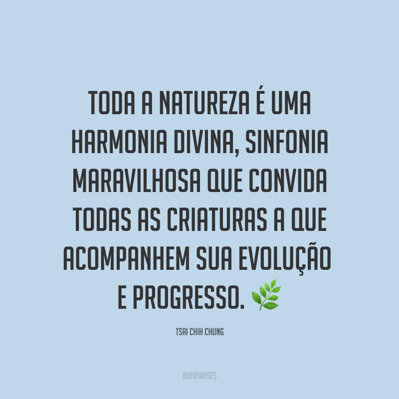 Toda a natureza é uma harmonia divina, sinfonia maravilhosa que convida todas as criaturas a que acompanhem sua evolução e progresso. ?