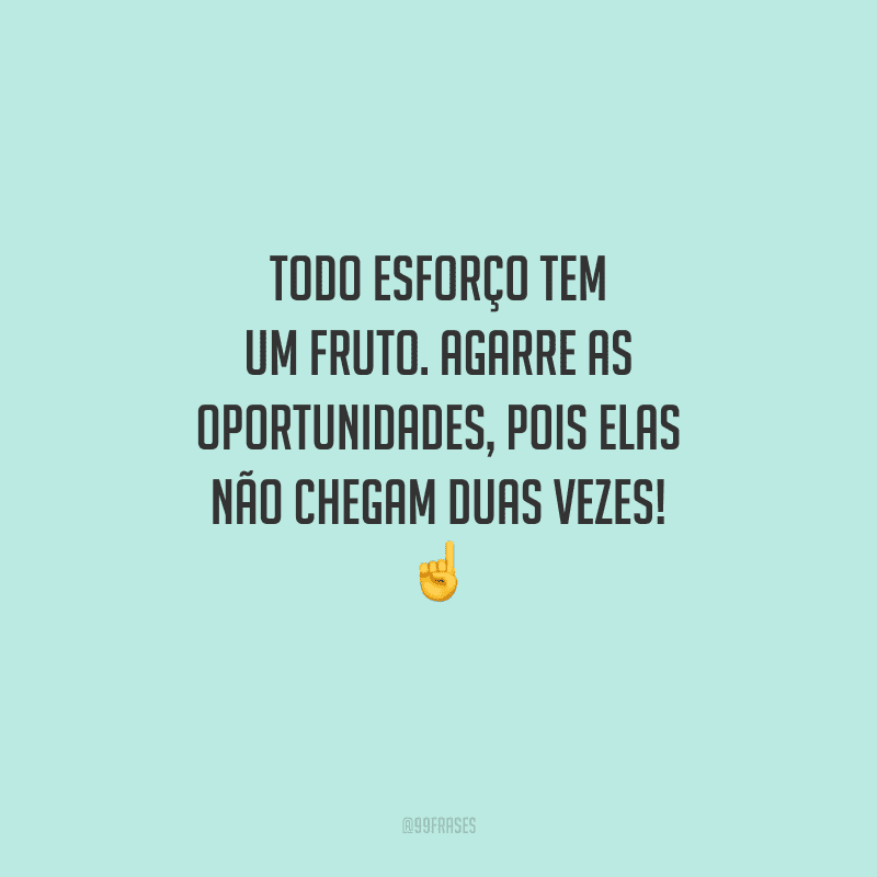 Todo esforço tem um fruto. Agarre as oportunidades, pois elas não chegam duas vezes!
