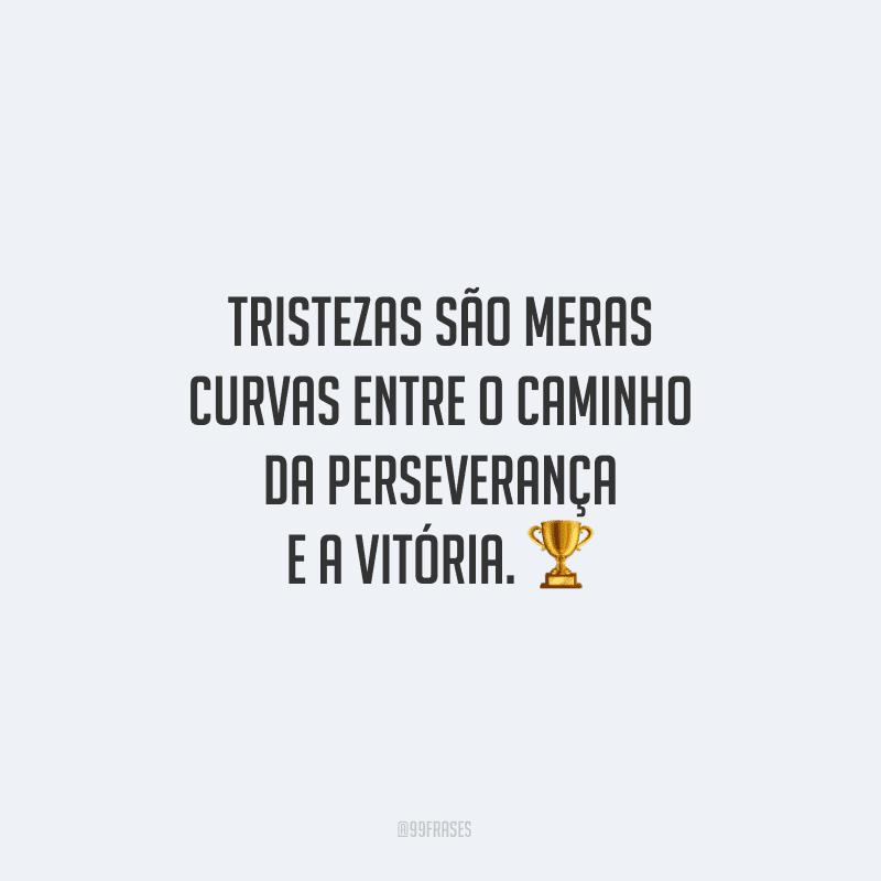 Tristezas são meras curvas entre o caminho da perseverança e a vitória.