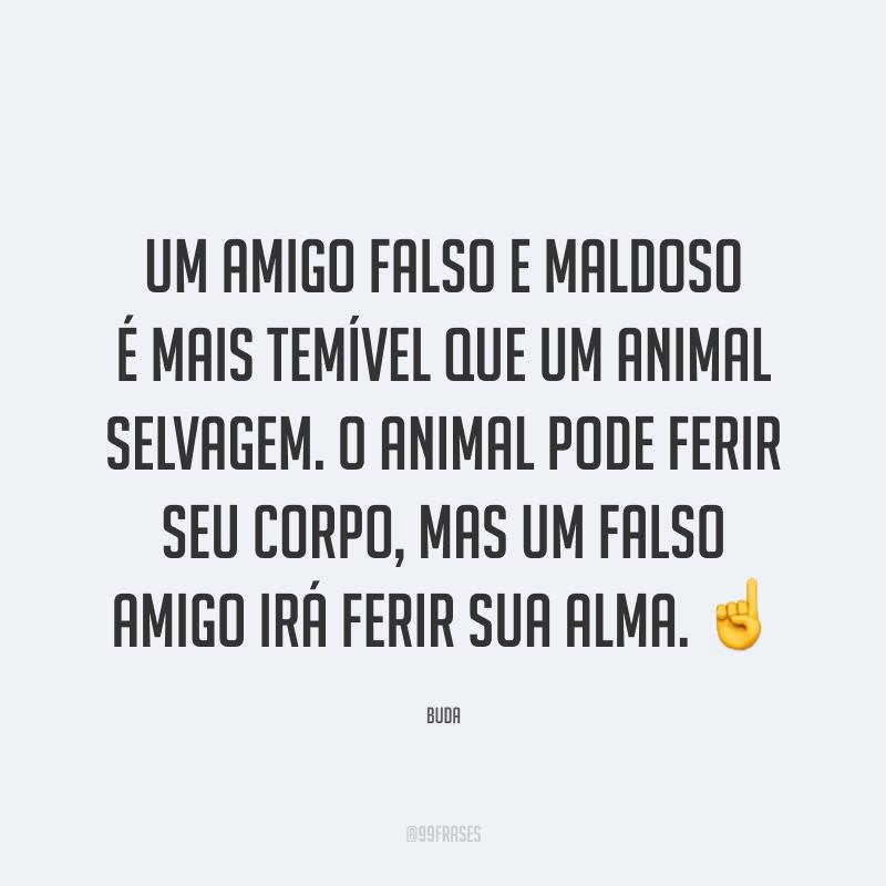 Um amigo falso e maldoso é mais temível que um animal selvagem. O animal pode ferir seu corpo, mas um falso amigo irá ferir sua alma. ☝️