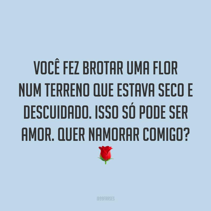 Você fez brotar uma flor num terreno que estava seco e descuidado. Isso só pode ser amor. Quer namorar comigo? 🌹